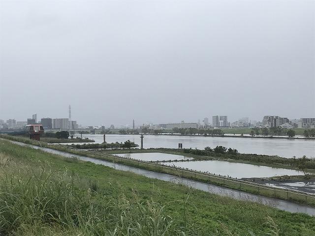 川口 荒川 ライブ カメラ