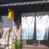 伊田和楽 河のじ