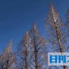 和歌山市、断水取りやめ 最長3日8万人影響と予告 - 社会 : 日刊スポーツ